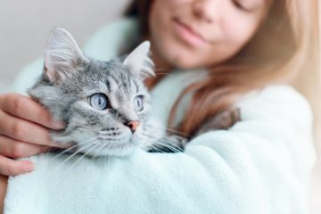 Are cats good pets?