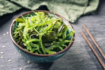 Can cats eat algae?